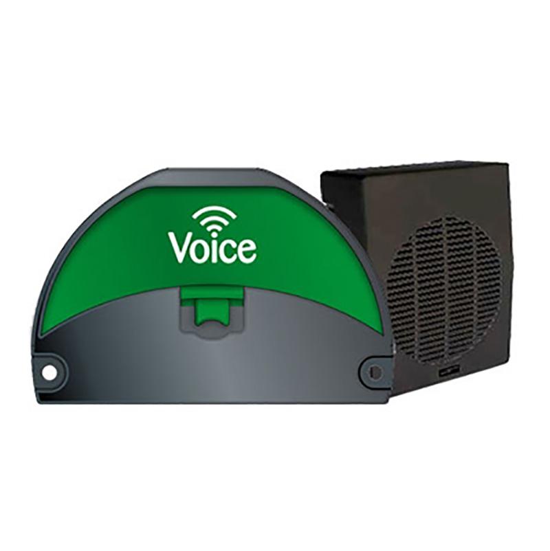 mp-voice